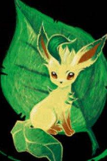 Pokemon Chi Quần Đùi Tiểu Tử